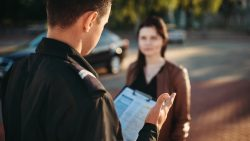 Types of Criminal Offences: Your Griffith Code Guide